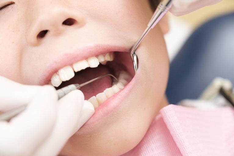 日本矯正歯科学会の認定医在籍