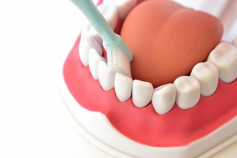 歯磨き、悪習慣(食習慣や歯ぎしりなど)への指導